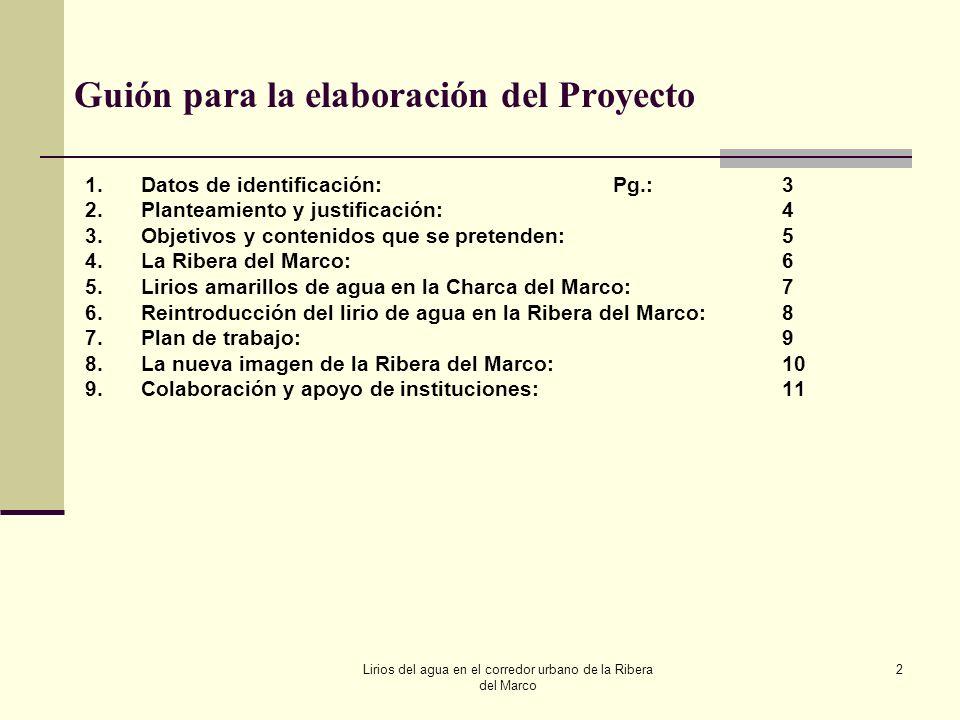 Guión para la elaboración del Proyecto