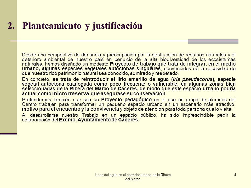2. Planteamiento y justificación
