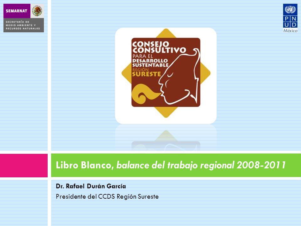 Libro Blanco, balance del trabajo regional 2008-2011