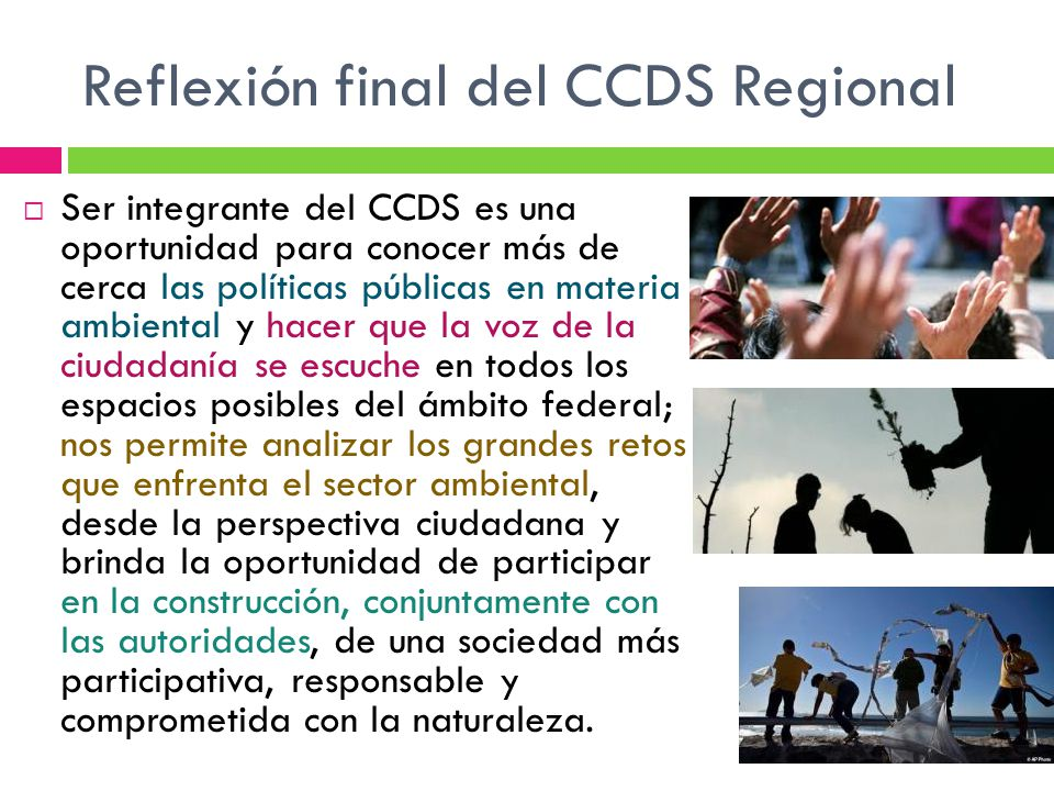 Reflexión final del CCDS Regional