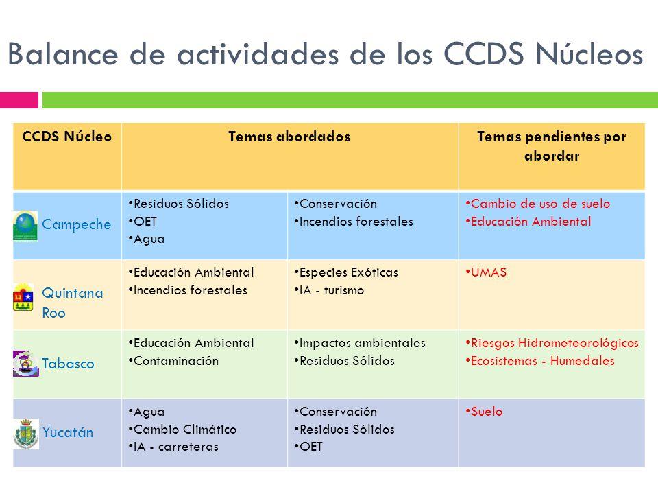 Balance de actividades de los CCDS Núcleos