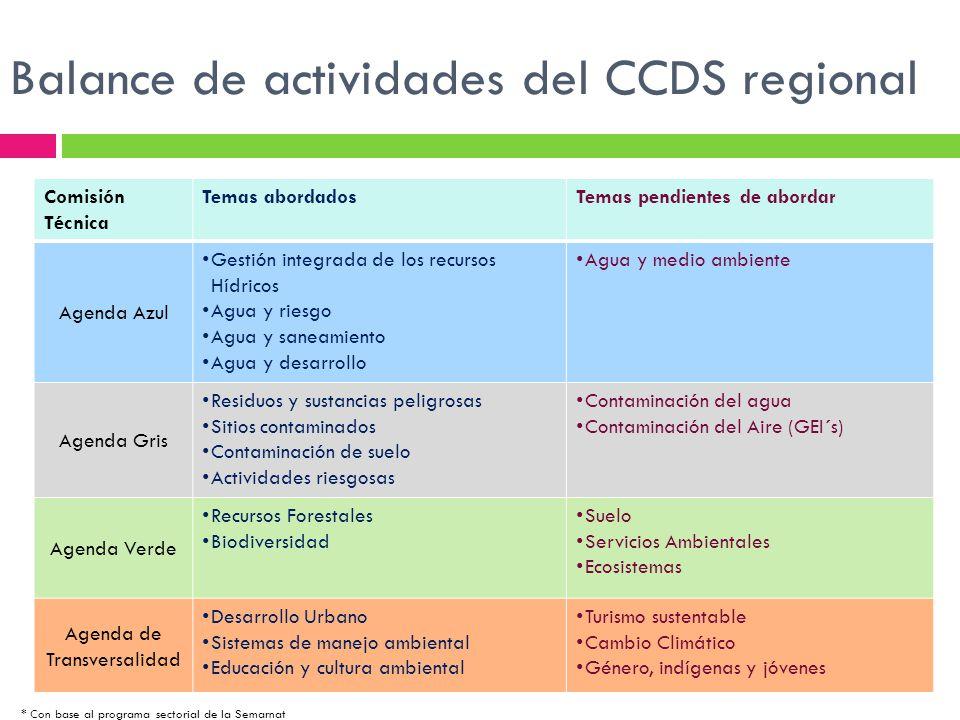 Balance de actividades del CCDS regional