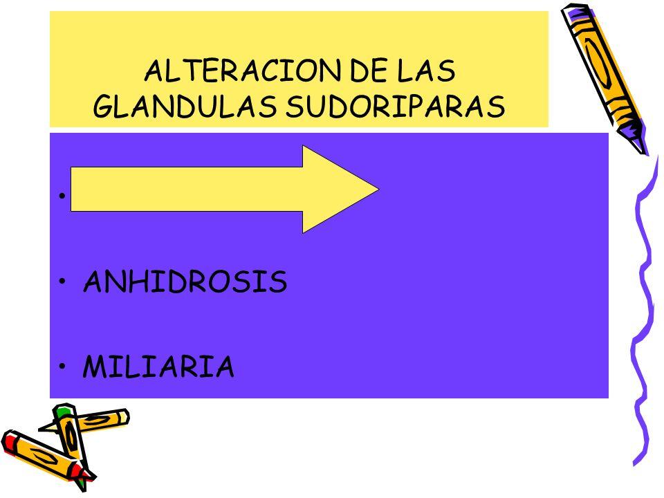 ALTERACION DE LAS GLANDULAS SUDORIPARAS