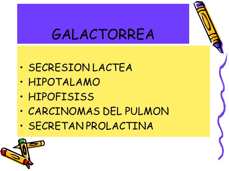 GALACTORREA SECRESION LACTEA HIPOTALAMO HIPOFISISS