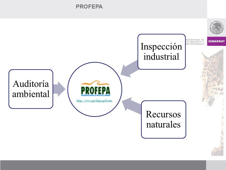 Inspección industrial
