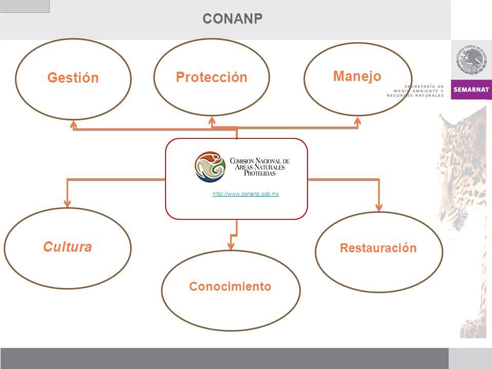 CONANP Gestión Protección Manejo Cultura