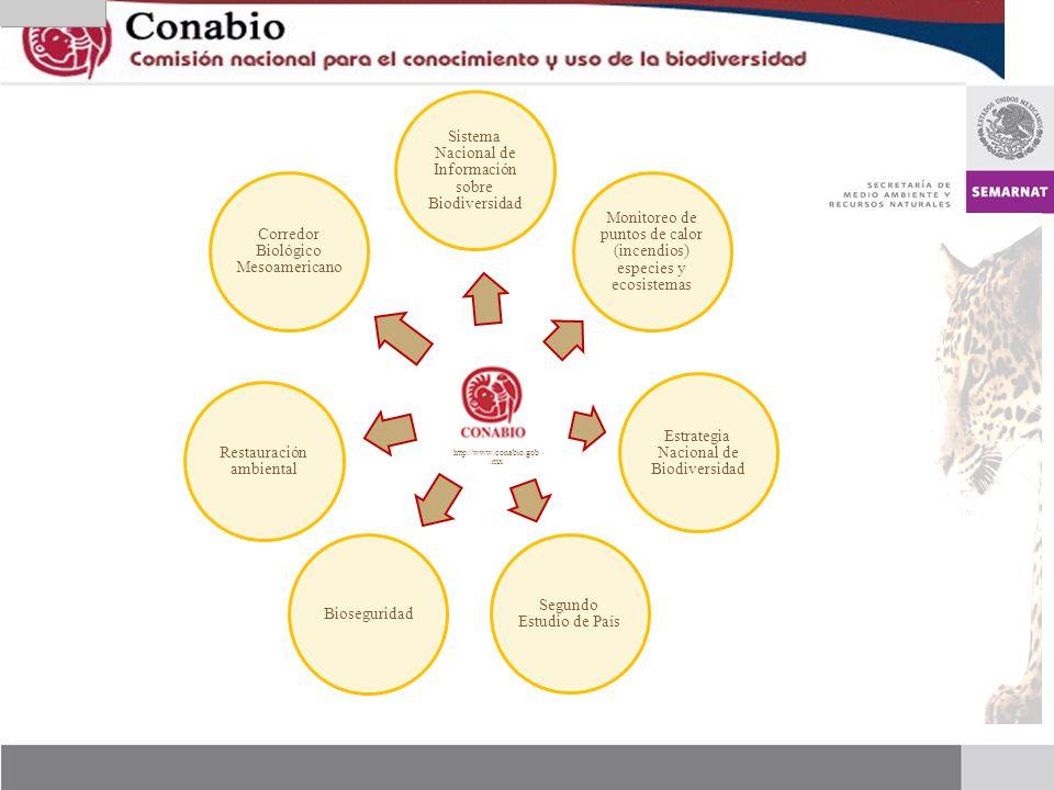 http://www.conabio.gob.mx Sistema Nacional de Información sobre Biodiversidad. Monitoreo de puntos de calor (incendios) especies y ecosistemas.