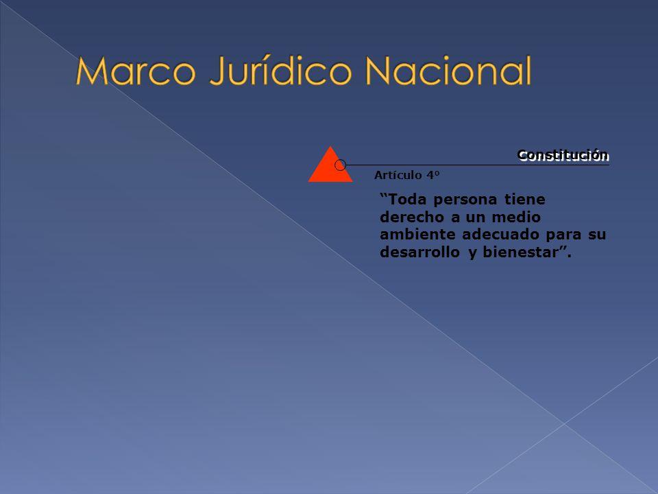 Marco Jurídico Nacional