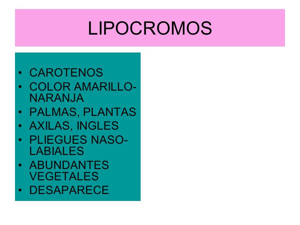 LIPOCROMOS CAROTENOS COLOR AMARILLO- NARANJA PALMAS, PLANTAS