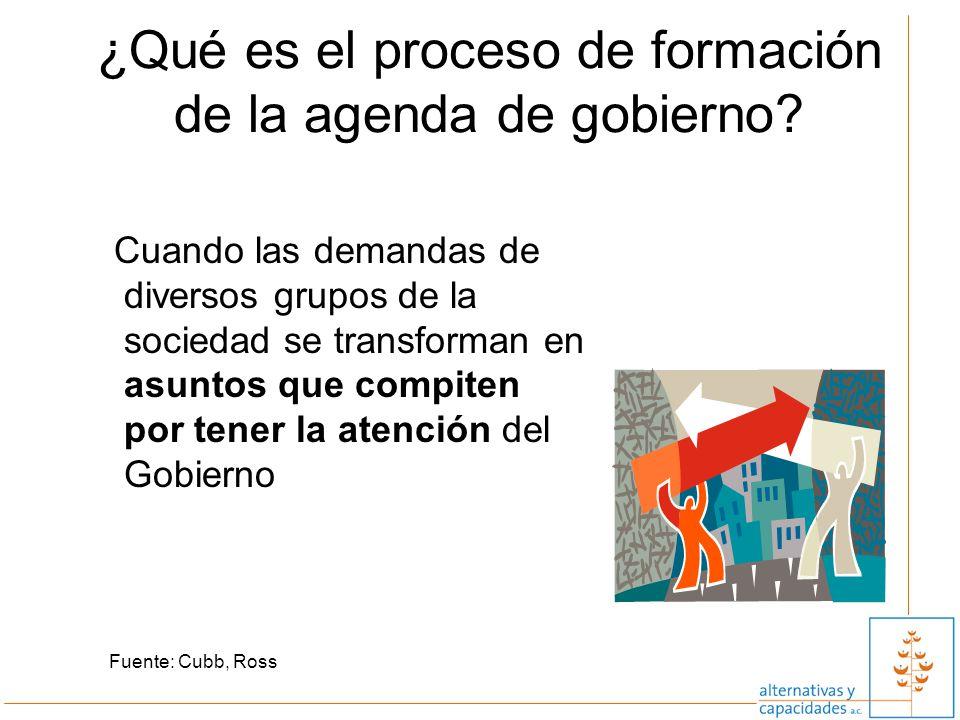 ¿Qué es el proceso de formación de la agenda de gobierno