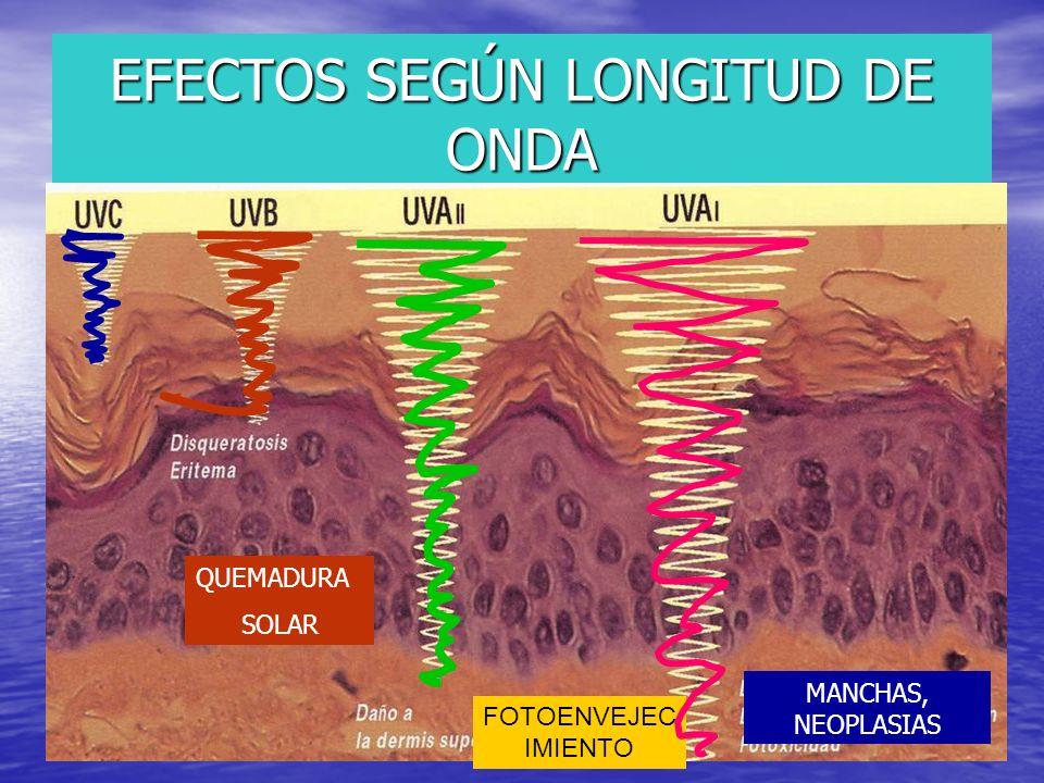 EFECTOS SEGÚN LONGITUD DE ONDA