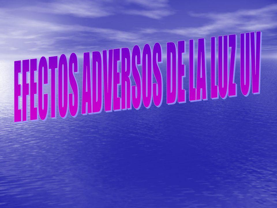 EFECTOS ADVERSOS DE LA LUZ UV
