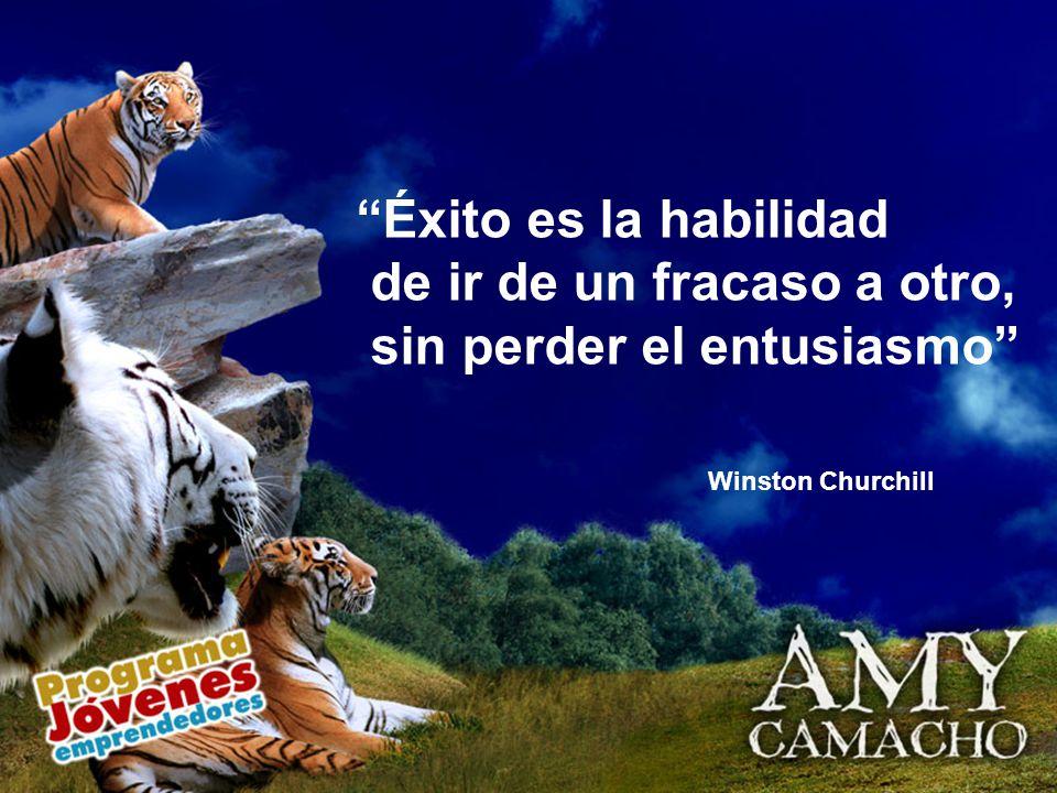 Éxito es la habilidad de ir de un fracaso a otro, sin perder el entusiasmo Winston Churchill