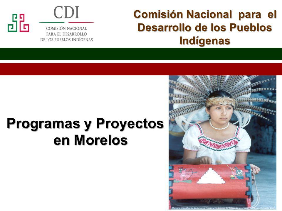 Programas y Proyectos en Morelos
