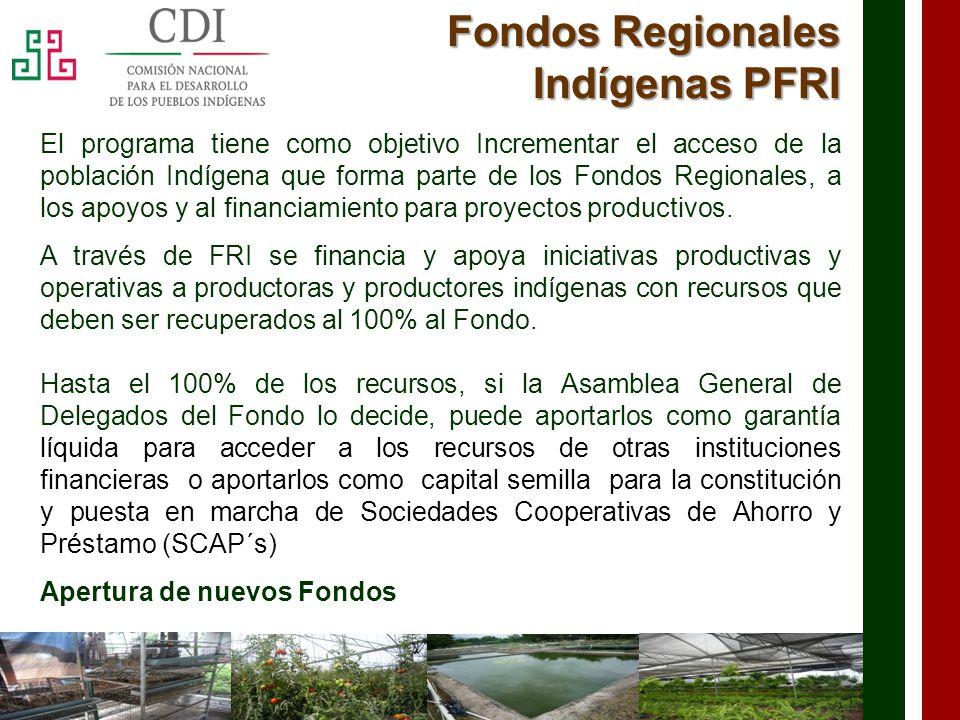 Fondos Regionales Indígenas PFRI