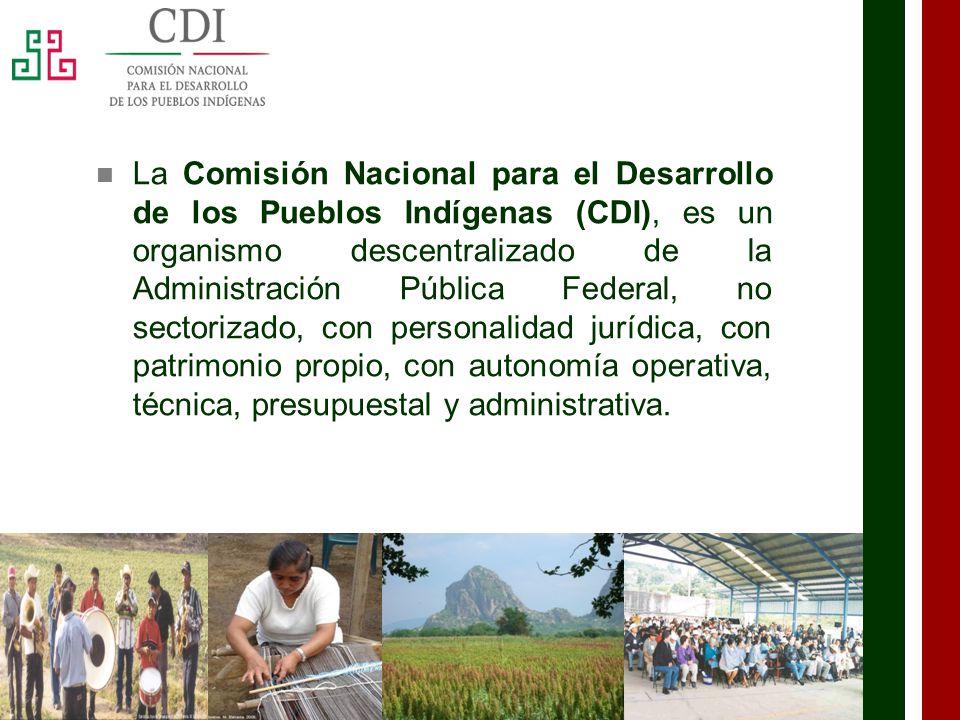 La Comisión Nacional para el Desarrollo de los Pueblos Indígenas (CDI), es un organismo descentralizado de la Administración Pública Federal, no sectorizado, con personalidad jurídica, con patrimonio propio, con autonomía operativa, técnica, presupuestal y administrativa.