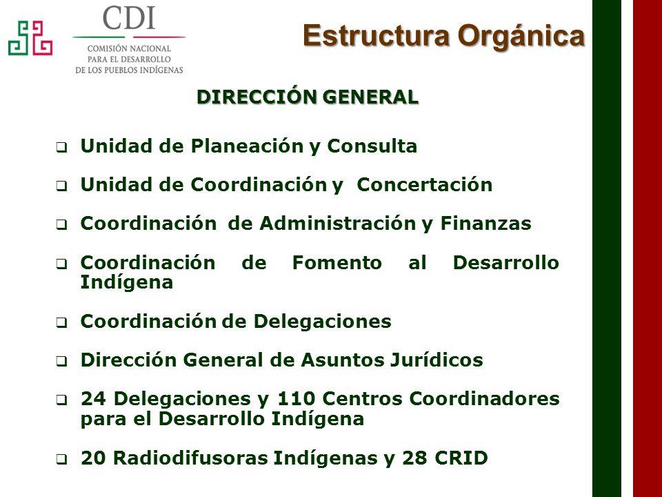 Estructura Orgánica DIRECCIÓN GENERAL Unidad de Planeación y Consulta