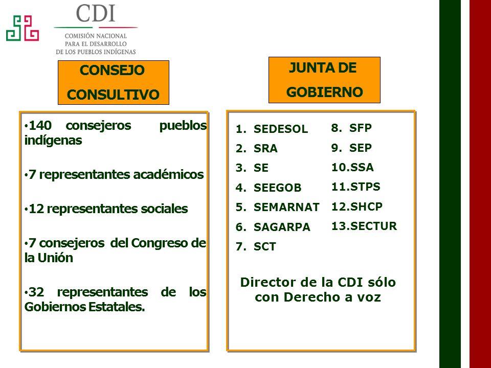 Director de la CDI sólo con Derecho a voz