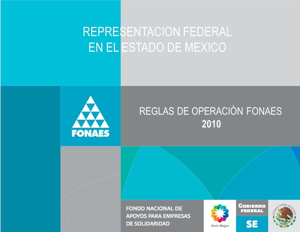 REPRESENTACION FEDERAL EN EL ESTADO DE MEXICO