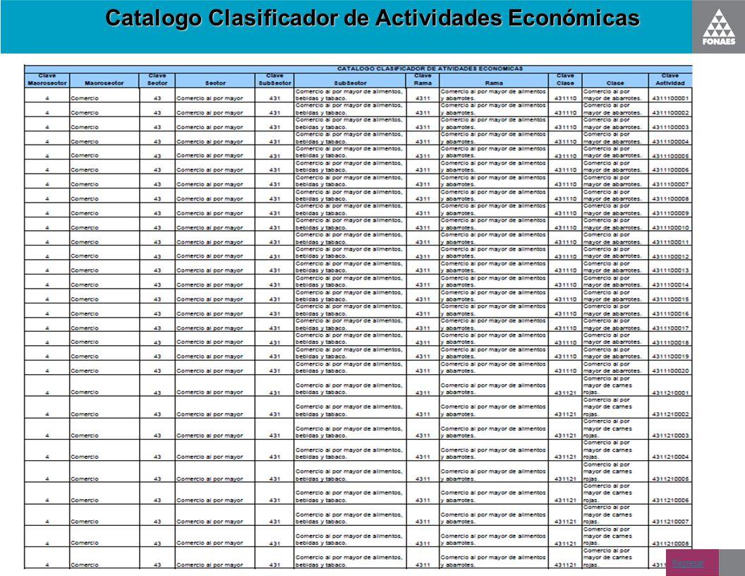 Catalogo Clasificador de Actividades Económicas
