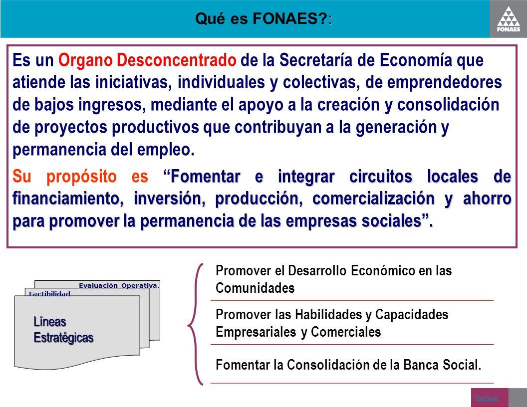 Qué es FONAES :