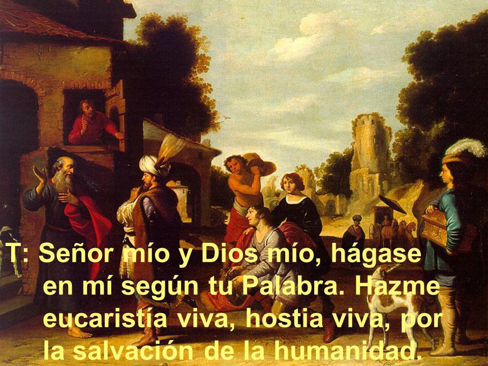 T: Señor mío y Dios mío, hágase en mí según tu Palabra