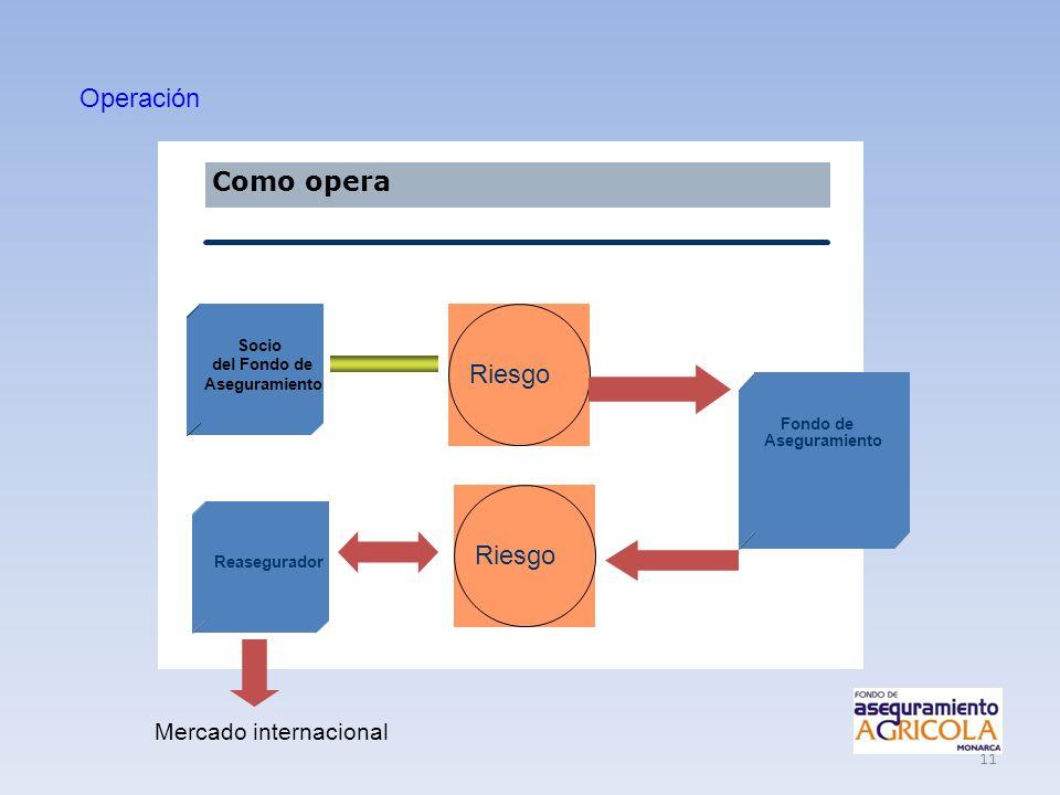 Operación Como opera Riesgo Riesgo Mercado internacional Socio