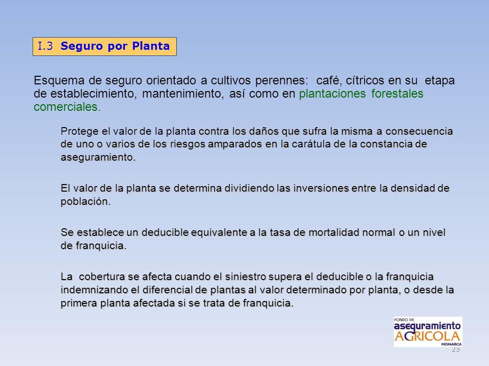 I.3 Seguro por Planta
