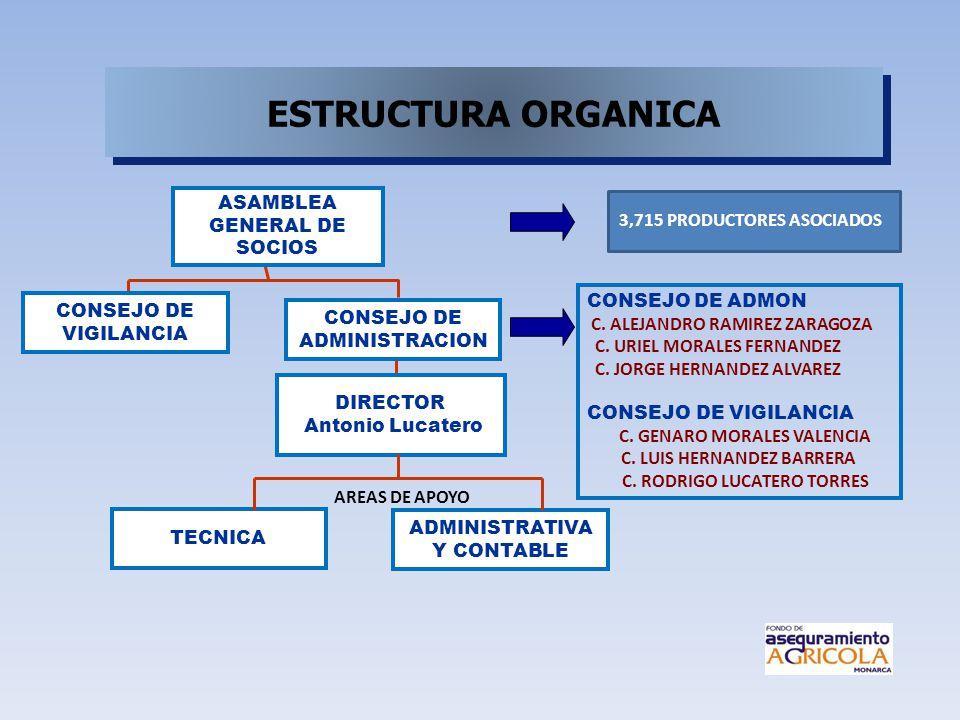 ESTRUCTURA ORGANICA ASAMBLEA GENERAL DE SOCIOS
