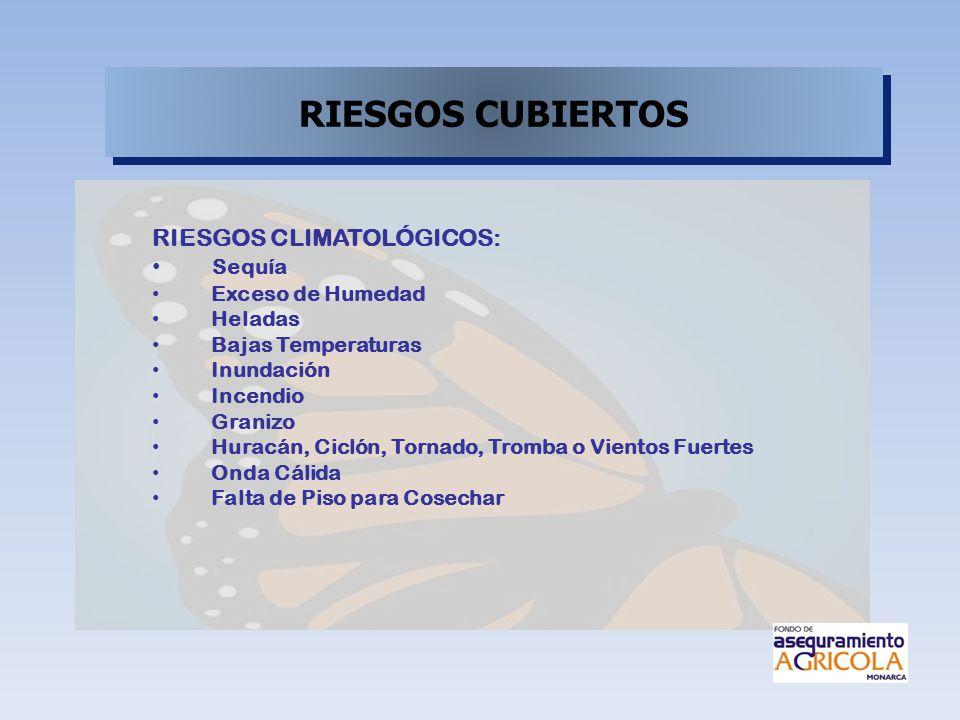 RIESGOS CUBIERTOS RIESGOS CLIMATOLÓGICOS: Sequía Exceso de Humedad