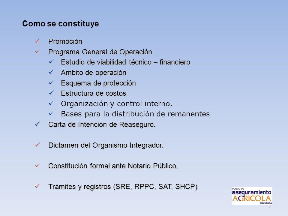 Como se constituye Promoción Programa General de Operación