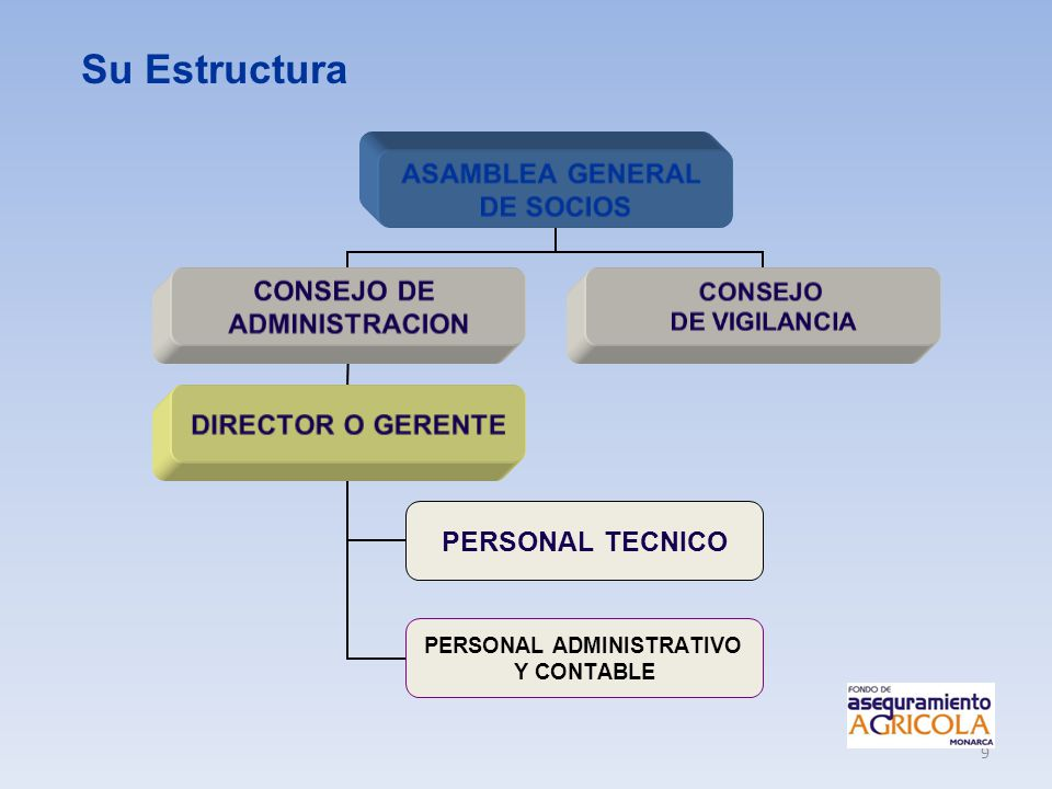 Su Estructura