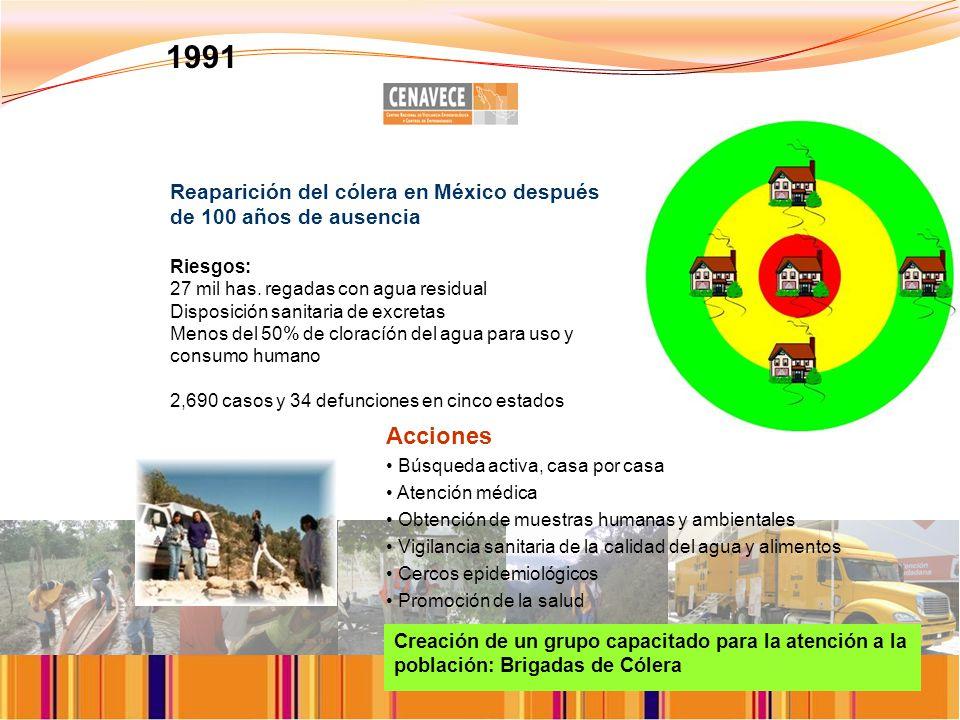 1991 Reaparición del cólera en México después de 100 años de ausencia. Riesgos: 27 mil has. regadas con agua residual.
