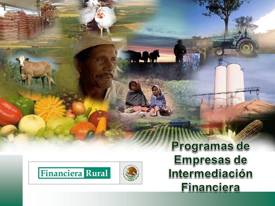 Programas de Empresas de Intermediación Financiera