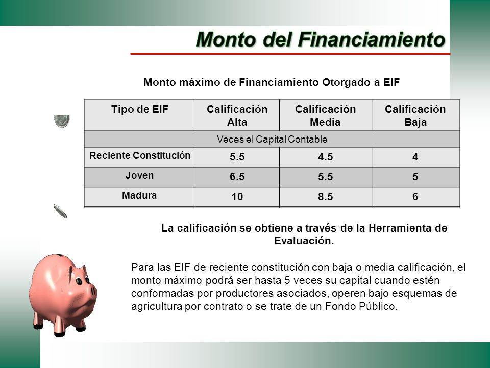 Monto del Financiamiento