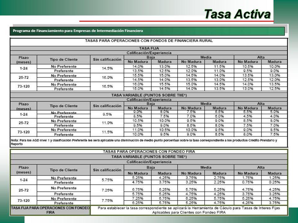 Tasa Activa
