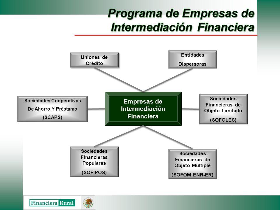 Programa de Empresas de Intermediación Financiera