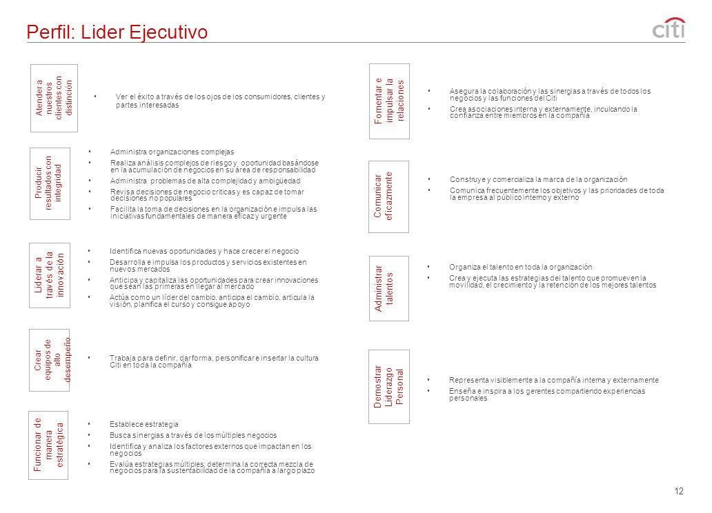 Perfil: Lider Ejecutivo