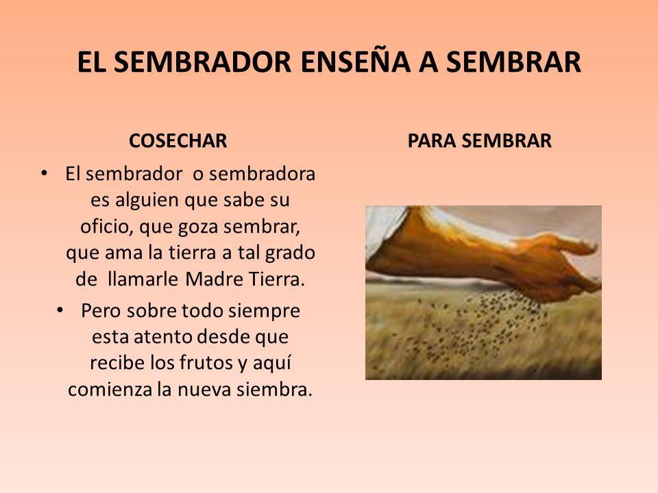 EL SEMBRADOR ENSEÑA A SEMBRAR