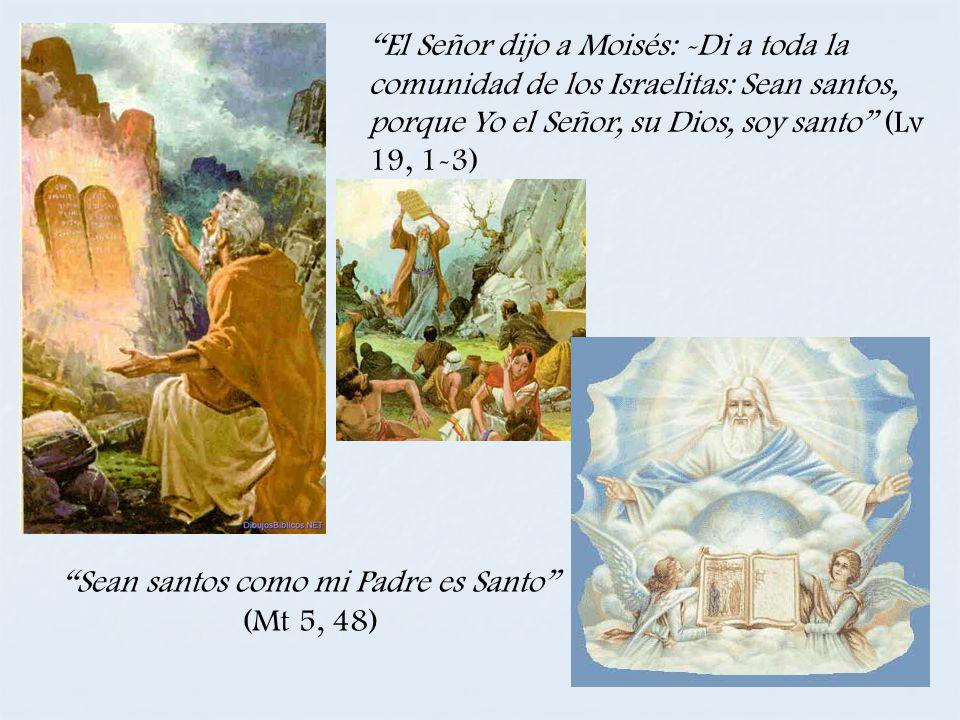 Sean santos como mi Padre es Santo (Mt 5, 48)