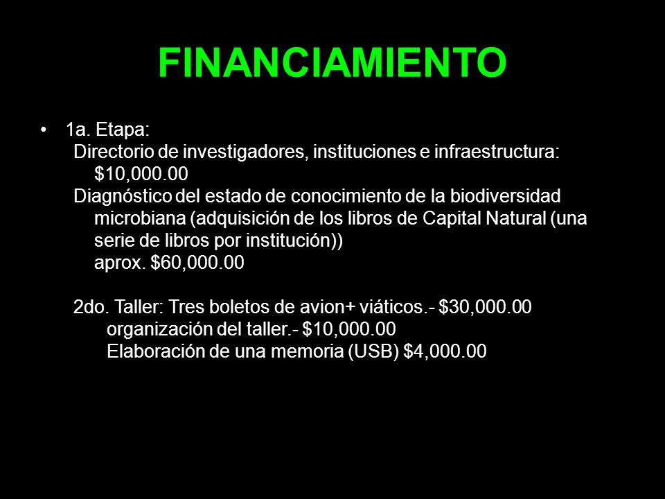 FINANCIAMIENTO 1a. Etapa: