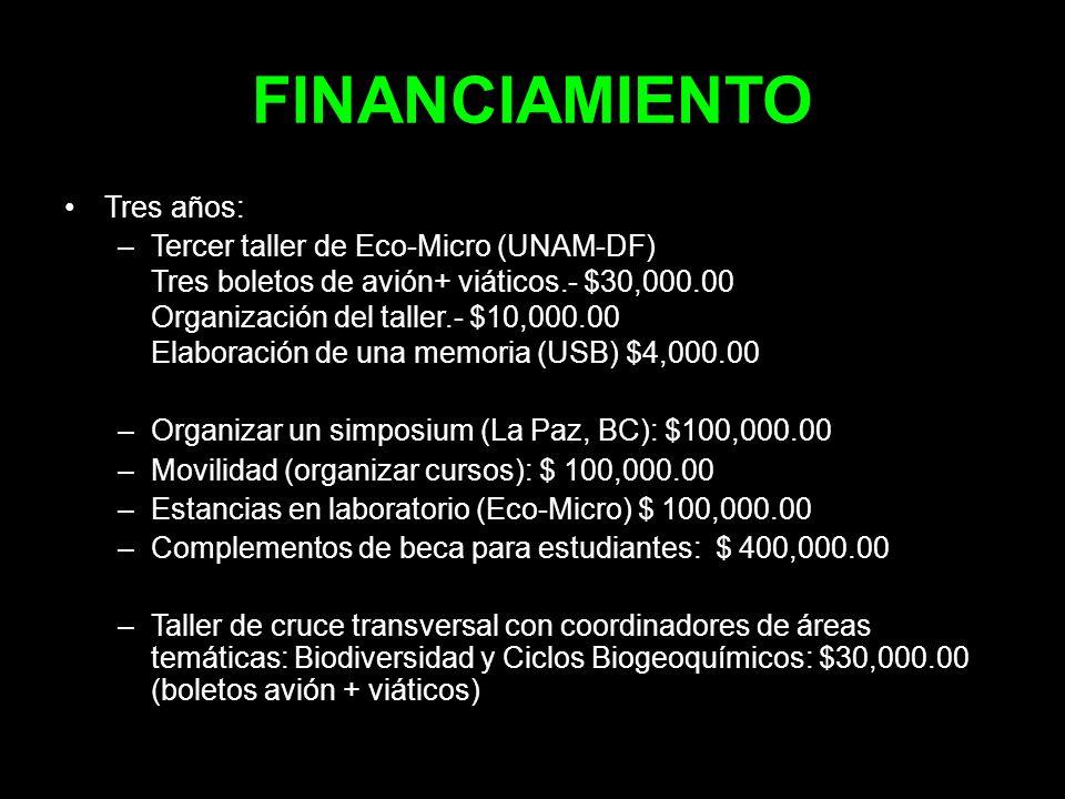 FINANCIAMIENTO Tres años: Tercer taller de Eco-Micro (UNAM-DF)