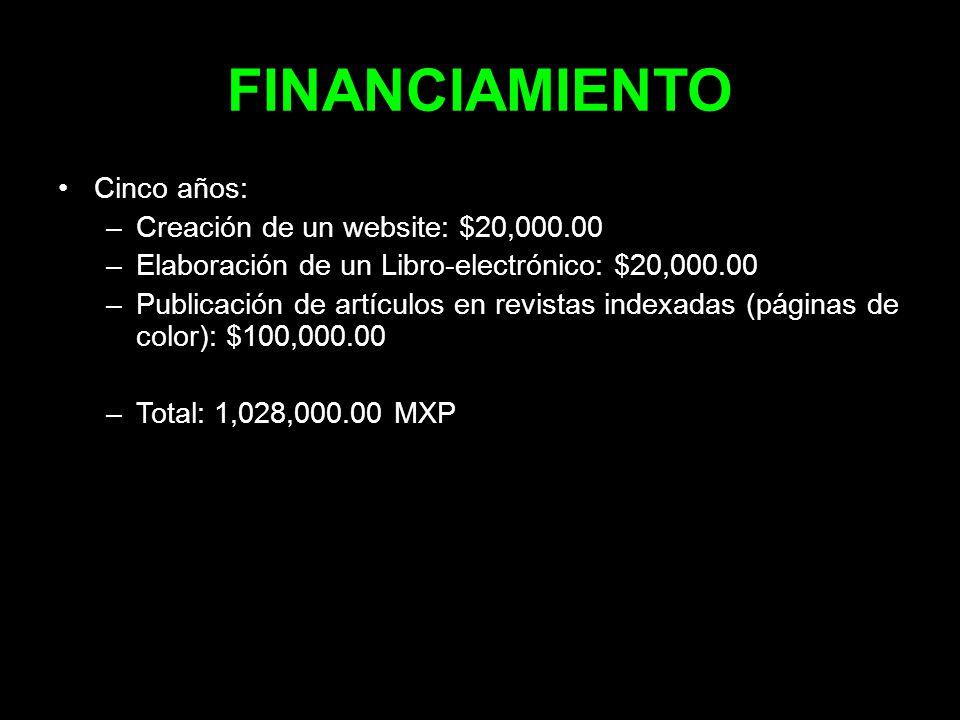 FINANCIAMIENTO Cinco años: Creación de un website: $20,000.00