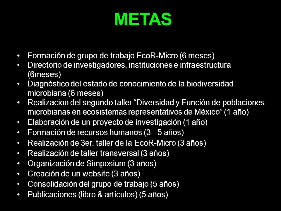 METAS Formación de grupo de trabajo EcoR-Micro (6 meses)