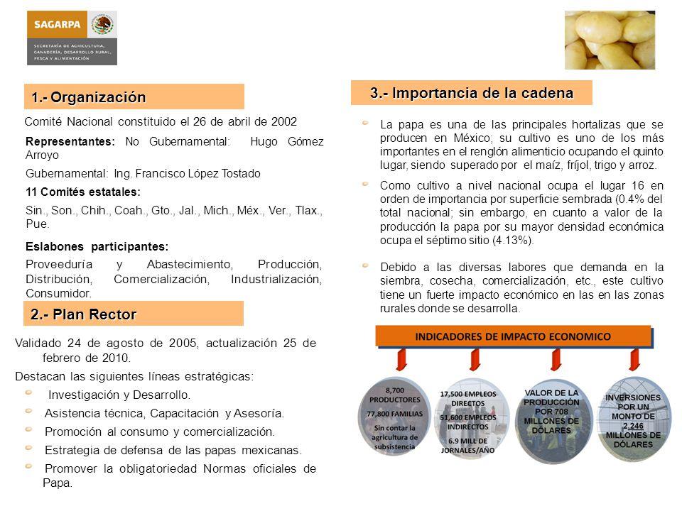 3.- Importancia de la cadena