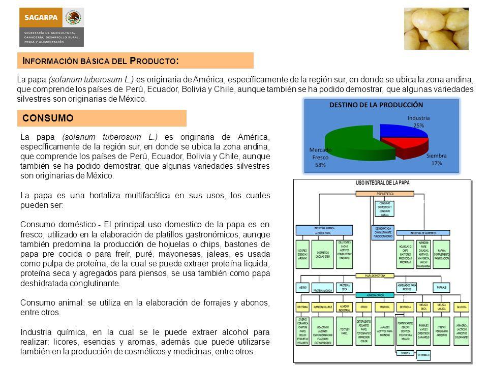 Información básica del Producto: