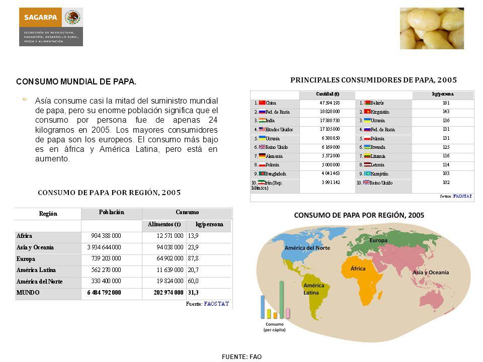 PRINCIPALES CONSUMIDORES DE PAPA, 2005