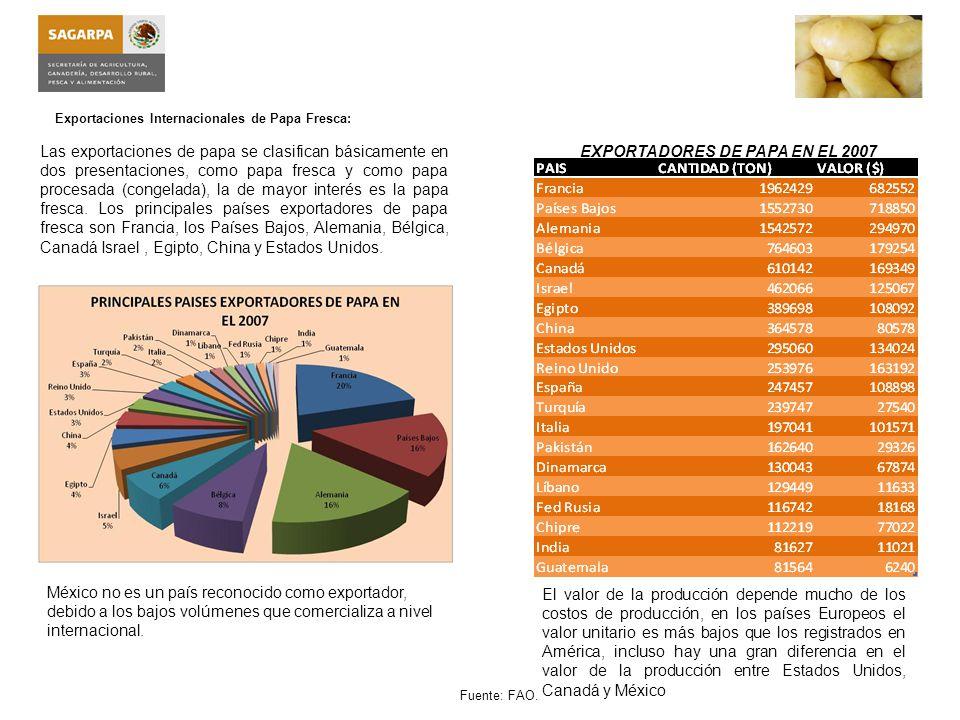 EXPORTADORES DE PAPA EN EL 2007