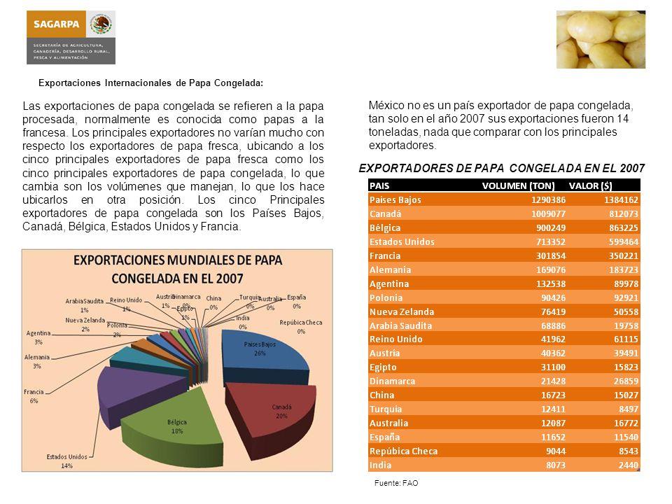 EXPORTADORES DE PAPA CONGELADA EN EL 2007