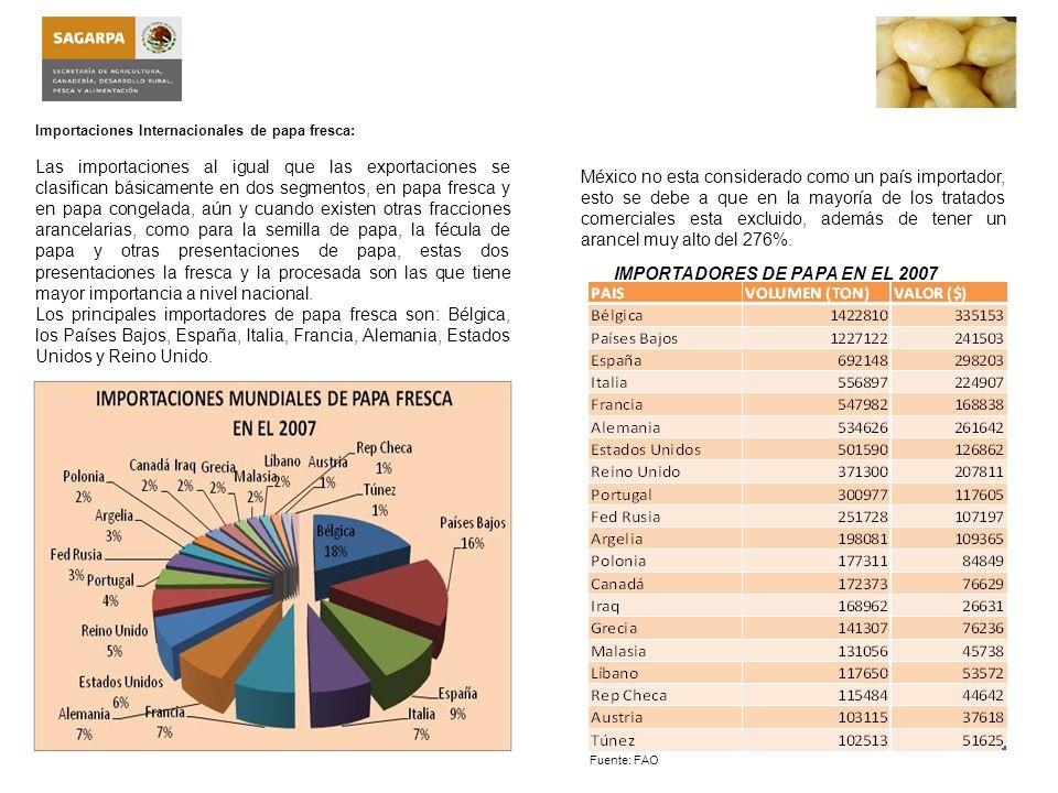 IMPORTADORES DE PAPA EN EL 2007